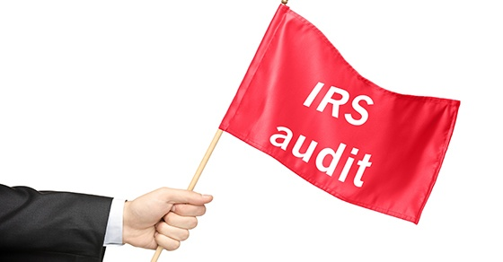 IRS Audit Techniques Guides provide clues to what may come up if your business is audited
