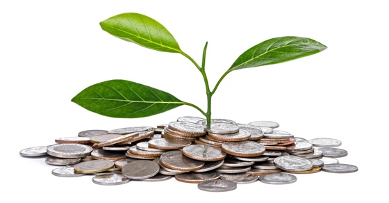 Financial sustainability and your nonprofit