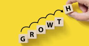 Steering your nonprofit through its growth stage
